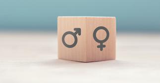 Index de l'égalité femmes-hommes